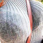 【ニット乳エロ画像】セーターやタートルネックが爆乳ではちきれそうなデカパイ女子達のニット乳のエロ画像集!ww【80枚】